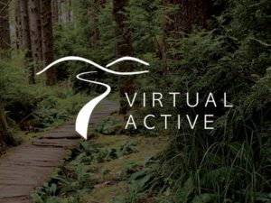 vision-xf40-virtual-active